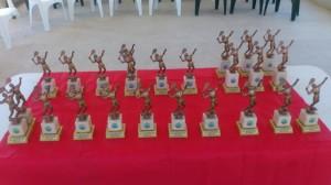 winter season 2014 trophies - web